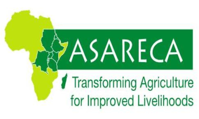 Association for Strengthening Agricultural Research in East and Central Africa (ASARECA)